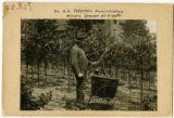 Perterson, AG
