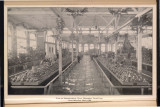 Photograph, View of Horticultural...