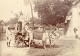 Image for Native bullock carriage