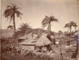 Image for Native Hut, Bengal
