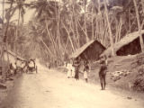 Image for Scene on the Galle and Mahara Road
