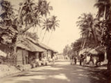 Image for Road Scene near Galle