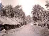 Image for Road Scene in Ceylon